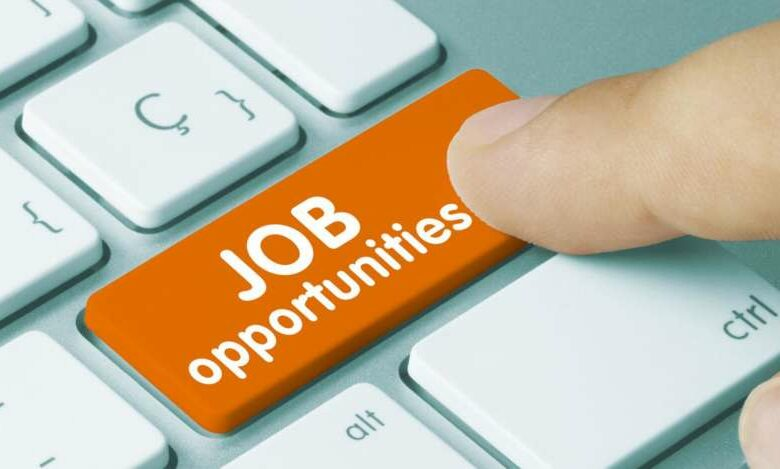 Jobs and Opportunities in Government Sector